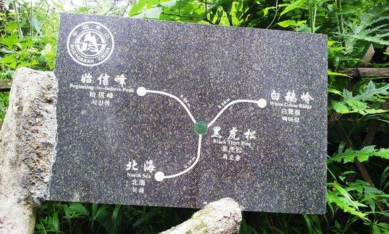 Mt. Huangshan (Yellow Mountain): Mount HuangShan on a rainy & foggy day (sob sob)