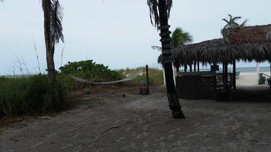 Cedar Cove Resort & Cottages : hammocks