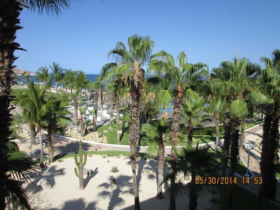 Paradisus Los Cabos: Our room garden view.