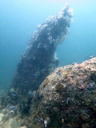 Ocean Pro Divers: Stonehenge