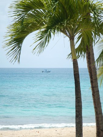 Grenadian by Rex Resorts : View from room
