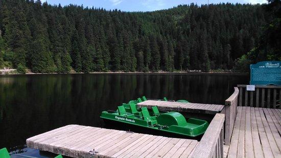 Hotel Heiligenstein : Pedal boats on Mummelsee