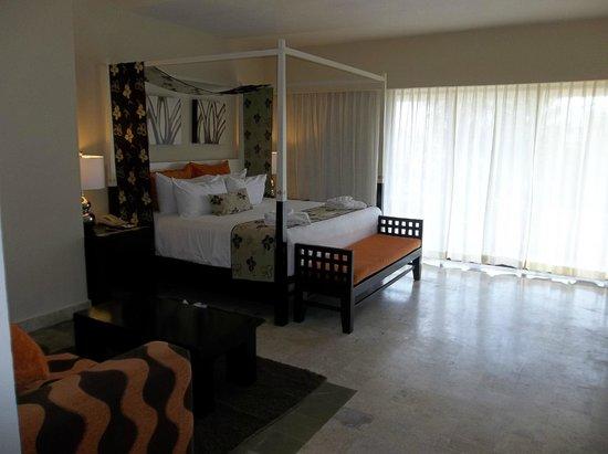 Dreams Puerto Aventuras Resort & Spa: King Room w/Dolphin View