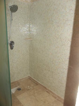 Dreams Puerto Aventuras Resort & Spa: Tiled Shower