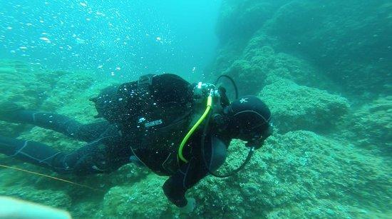 Scuba picture of blue planet diving center dubrovnik for Dive planet