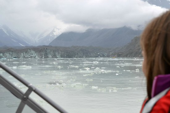 Glacier Explorers : Tasman Glacier