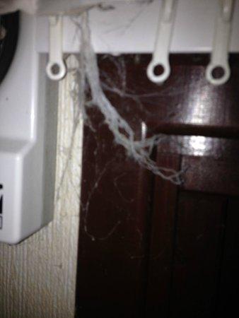 Belan Bach Lodges: Cobwebs hung everywhere