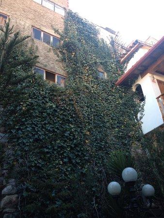 Hotel Rumi Punku: Ivy on the walls