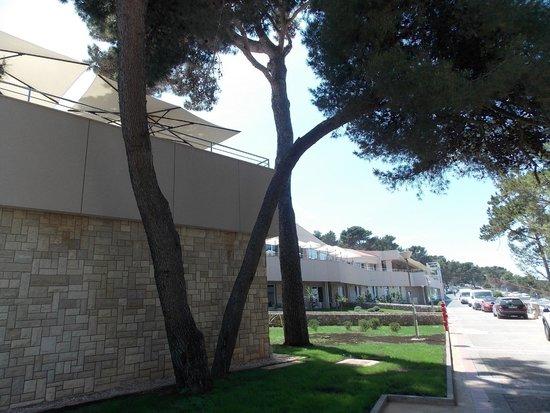 Vitality Hotel Punta: Hotel