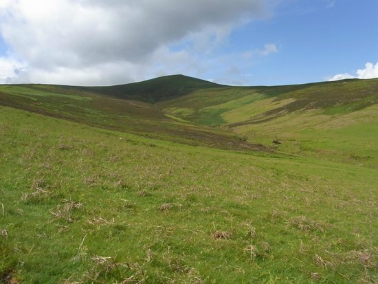 Wicklow Mountains National Park: Djouce