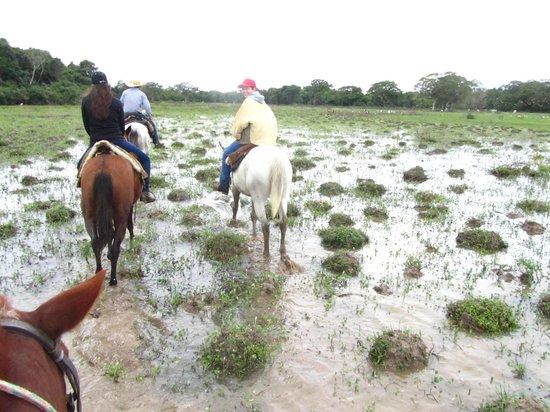 Pousada Piuval: horse riding through the wetlands