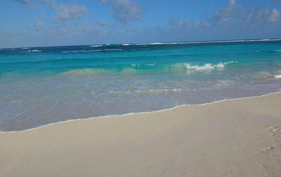 Restaurante El Paraiso: Una de las mejores playas de San Andrés!