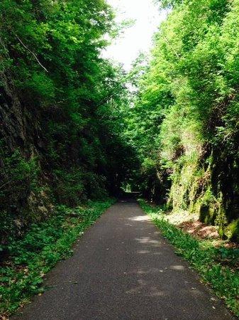 Harlem Valley Rail Trail