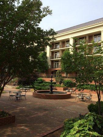 Sheraton Music City Hotel: Jardim privativo