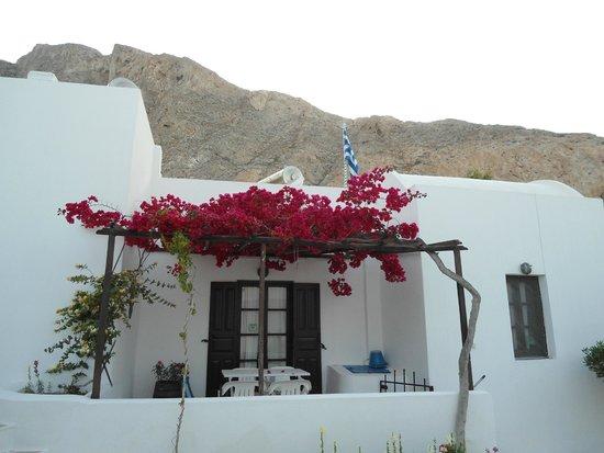 Villa Ostria: Beautiful flowers above our terrace