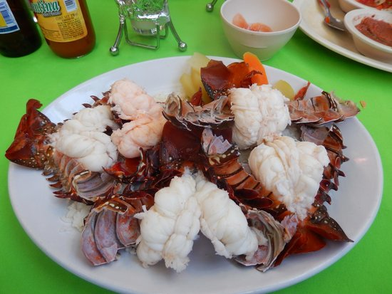 Maro's Shrimp House : The kilo of lobster