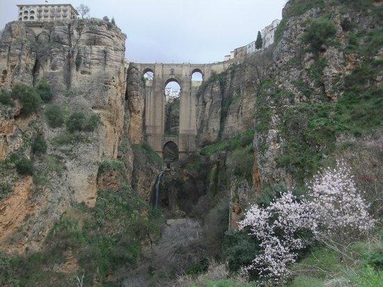 El Tajo de Ronda: Мост El Tajo Ронда Андалусия