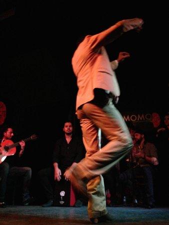 Cardamomo Tablao Flamenco : Male Dancer