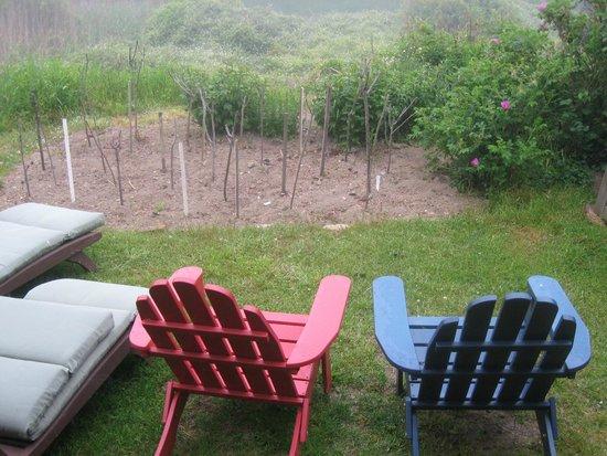 Sea Breeze: garden outside porch