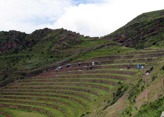 Pisac: terraces
