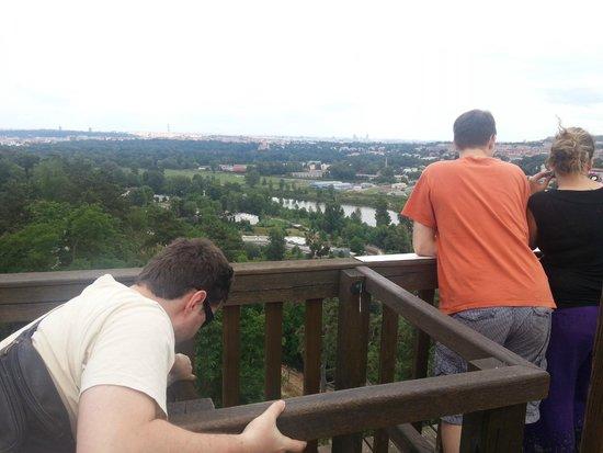Prague Zoo : A view