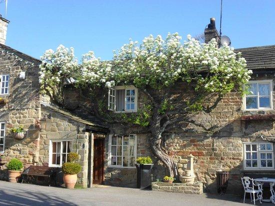 The Windmill Inn Updated 2017 B B Reviews Wetherby Yorkshire Tripadvisor