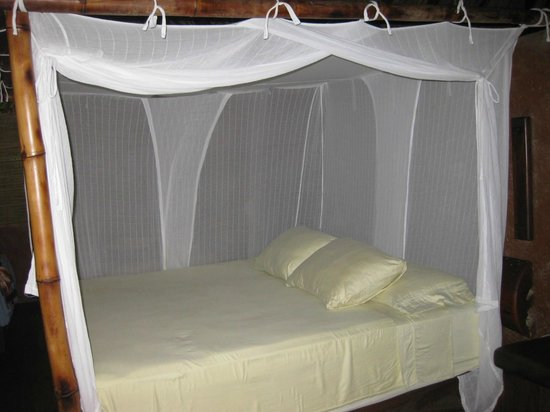 Casa Viva Troncones: All beds have mosquito nets….bring your bug spray!