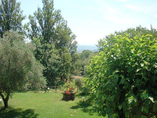 Agriturismo Il Borgo nelle Querce: View