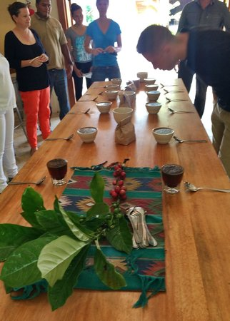 Copal Tree Lodge, a Muy'Ono Resort : Roasting & 'cupping' of coffee at the Belcampo Farm Center was a treat.