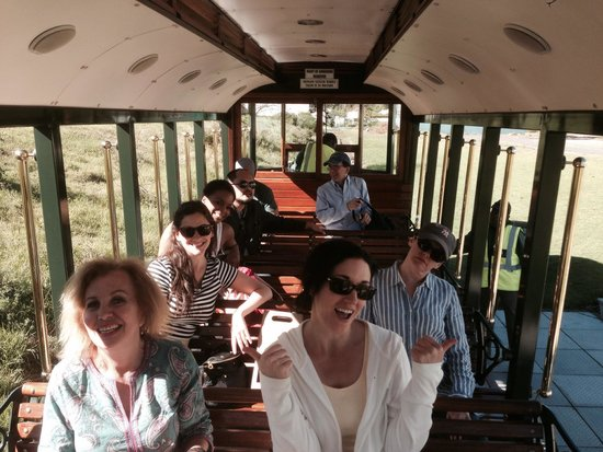 Escape to the Cape Sightseeing Tours: Winelands Meander on the Franshoek Tram