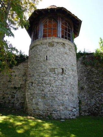 Chateau de Ripaille, jardins, vignobles