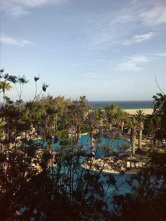 Melia Gorriones Fuerteventura : Blick vom Balkon