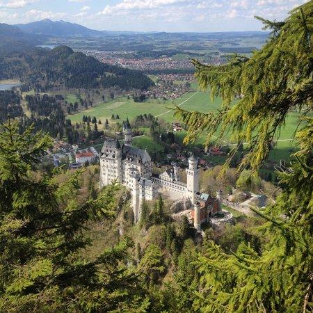 Castillo de Neuschwanstein: Вид на замок с горы