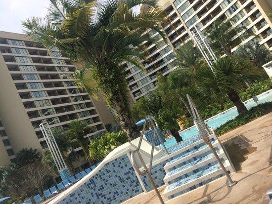 Bay Lake Tower at Disney's Contemporary Resort: Beautiful Pool