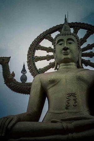 Villa Tanamera : Big Buddha