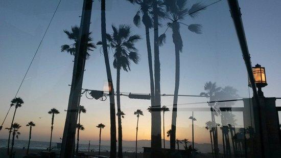 Venice Whaler Bar & Grill : Sunset