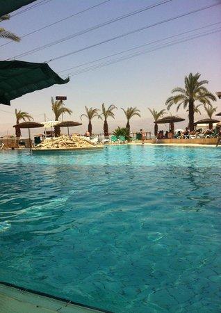 Leonardo Club Dead Sea Hotel : The pool