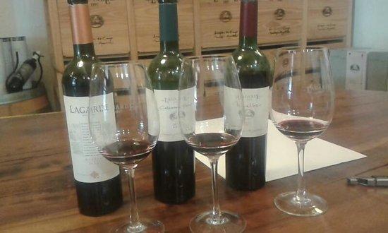 Bodega Lagarde: Dégustation de vins