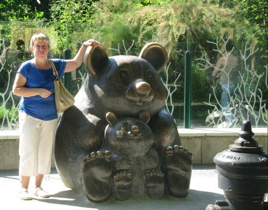 Tiergarten Schoenbrunn - Zoo Vienna : Бабушка в восторге. От панд за уши не оттащить. И от ушей панд скульптурных)