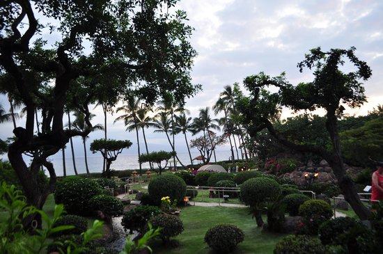 Hyatt Regency Maui Resort and Spa: Grounds