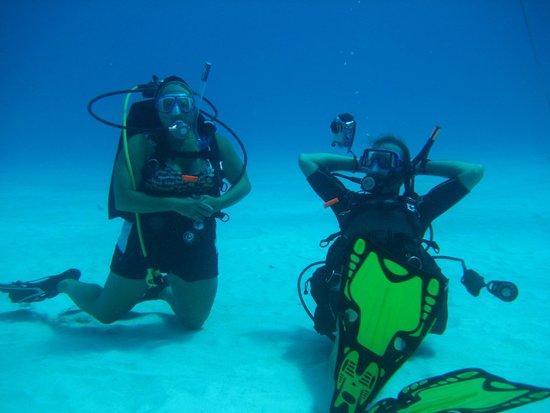 Scuba Steve's Diving Ltd.: Relaxing 40 feet under