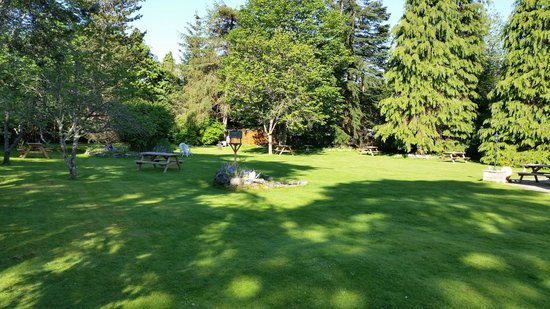 Columba House Hotel: Garden