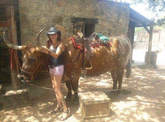 Enchanted Springs Ranch : Grabbing the bull by the horns hehe