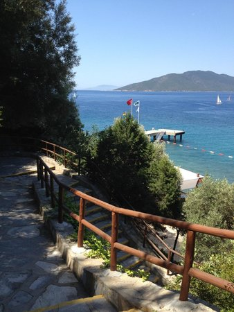 Club Med Bodrum Palmiye: Descente à la plage