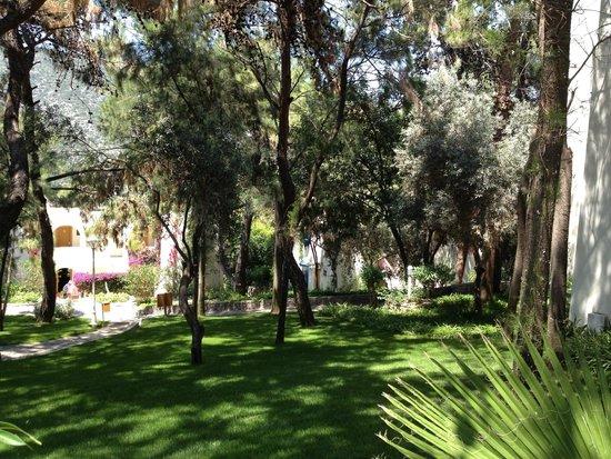 Club Med Bodrum Palmiye : Les jardins
