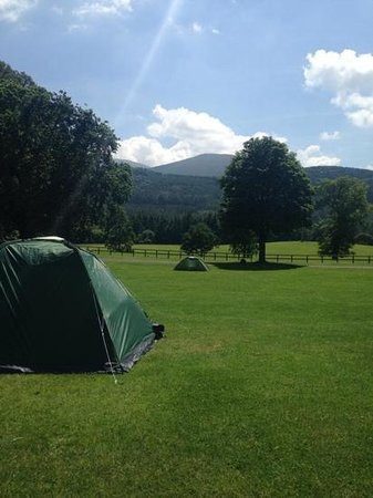 Tollymore Forest Park: campsite