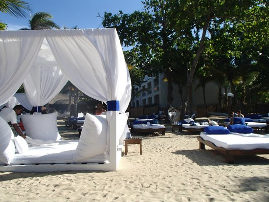 Cofresi Palm Beach & Spa Resort: NV Beach