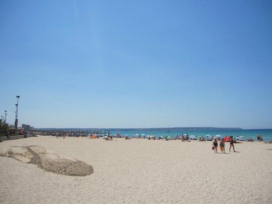 Hotel Amic Miraflores: beach