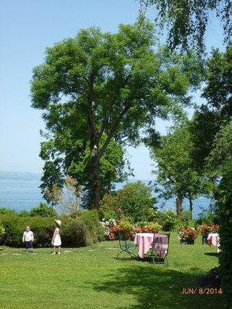 Lac Léman (Lac de Genève) : Yvoire