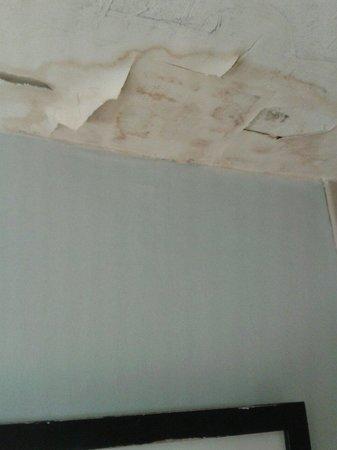 Hilton Long Island/Huntington: Mouldy damp ceiling